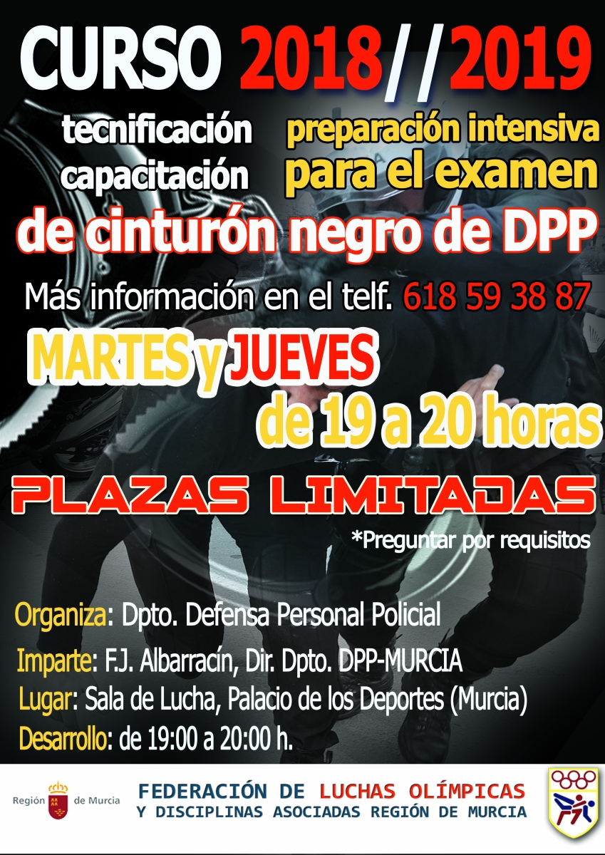 Defensa personal policial